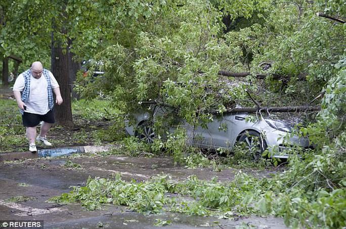 Thiếu nữ bị cây đè chết trong cơn bão trăm năm có một - Ảnh 3.