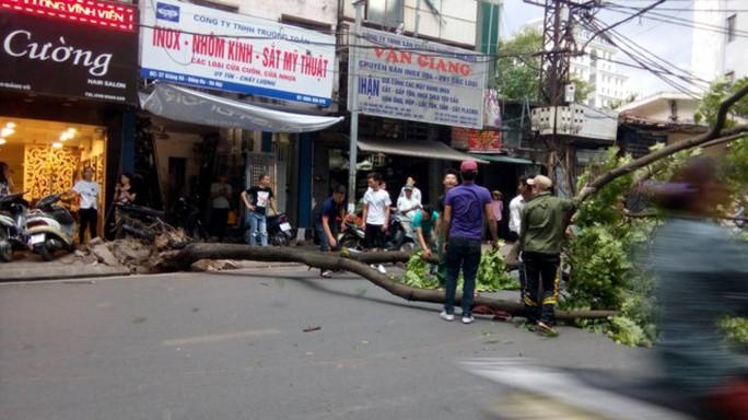 Sau đợt nắng nóng kỷ lục, Hà Nội mưa gió giông lốc đổ cây - Ảnh 7.