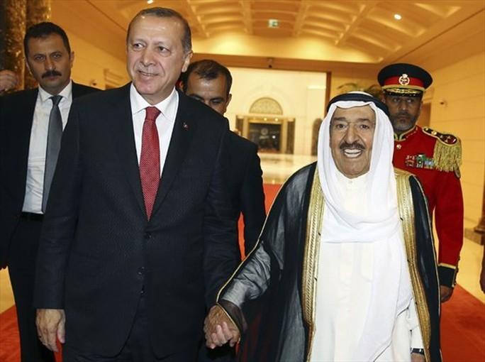 Tổng thống Thổ Nhĩ Kỳ tới vùng Vịnh - Ảnh 1.