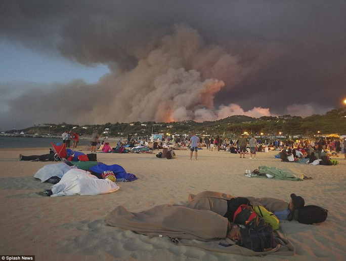 Cháy rừng hầm hập, du khách chạy ra biển ngủ - Ảnh 2.