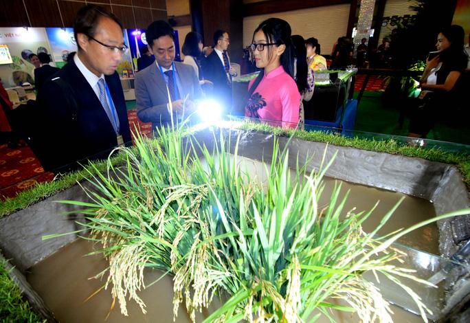 Ngắm những mô hình nông nghiệp độc đáo của Việt Nam tại APEC - Ảnh 3.