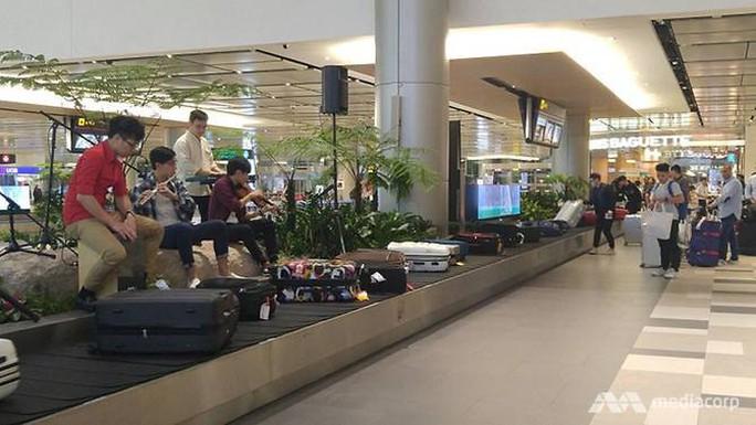 Nhà ga độc ở sân bay Singapore - Ảnh 1.