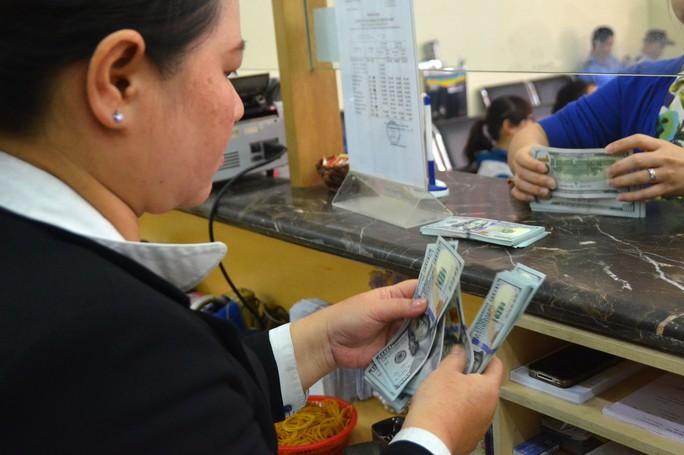 Nhà nước mạnh tay thu mua USD - Ảnh 1.