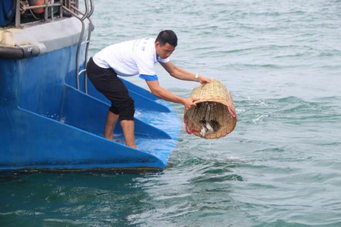 Ô nhiễm đe dọa Khu Bảo tồn biển Phú Quốc - Ảnh 1.
