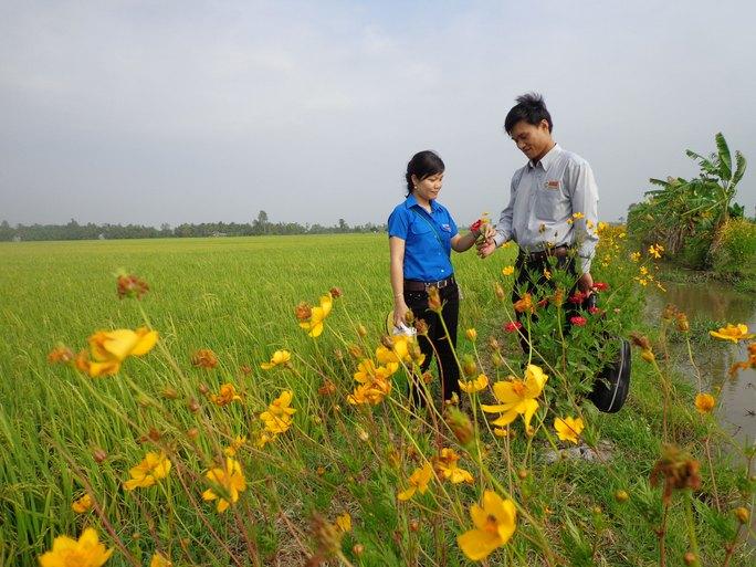 Cùng nông dân bảo vệ môi trường - Ảnh 1.