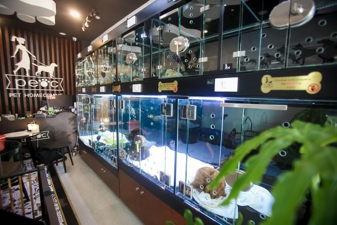 Choáng ngôi nhà 5 sao của thú cưng Sài Gòn - Ảnh 4.