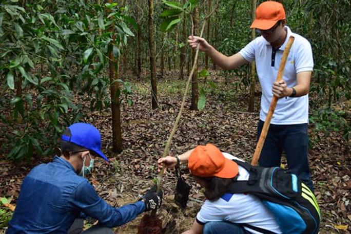 Sinh viên trồng rừng hưởng ứng ngày Môi trường thế giới - Ảnh 1.