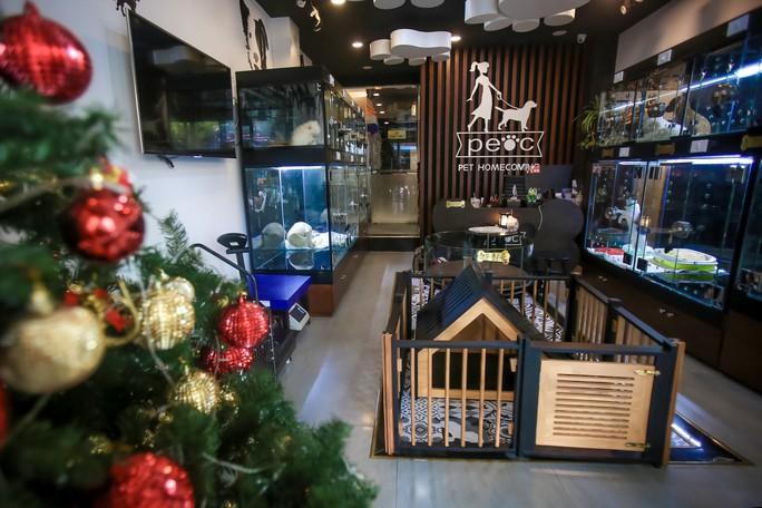 Choáng ngôi nhà 5 sao của thú cưng Sài Gòn - Ảnh 1.