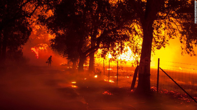Cháy rừng California: Chỉ còn tro và xương - Ảnh 1.