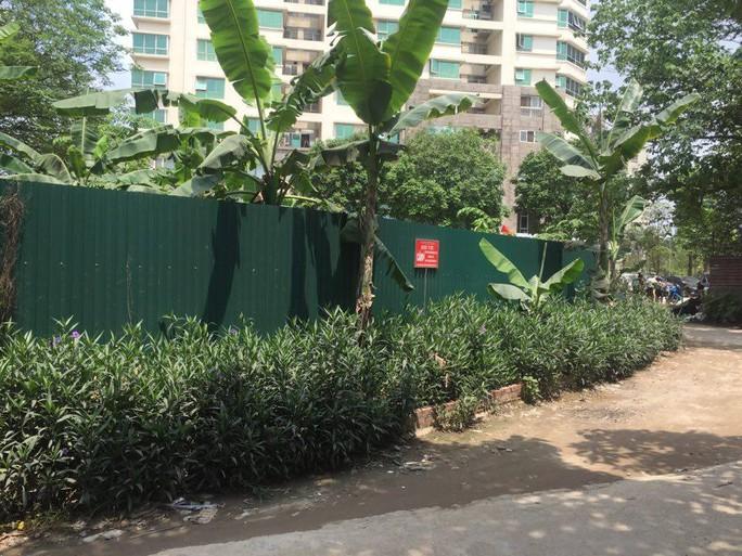 Ông Tây nhặt rác muốn biến mương thối thành một khu vườn - Ảnh 5.