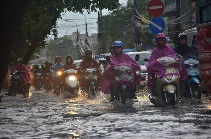 Sau đợt nắng nóng kỷ lục, Hà Nội mưa gió giông lốc đổ cây - Ảnh 5.