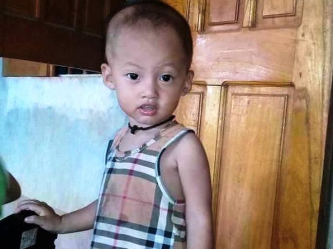 Bé trai 20 tháng tuổi ở Thanh Hóa mất tích bí ẩn - Ảnh 1.