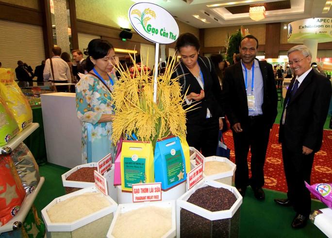 Ngắm những mô hình nông nghiệp độc đáo của Việt Nam tại APEC - Ảnh 2.