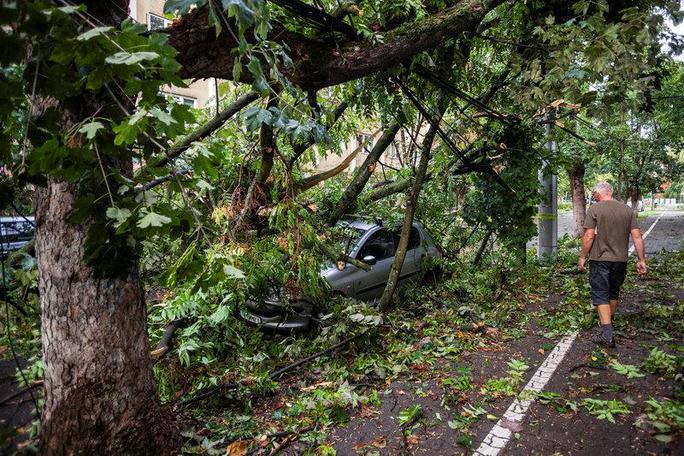 Dự báo mưa lại xảy ra bão, làm 75 người thương vong - Ảnh 3.
