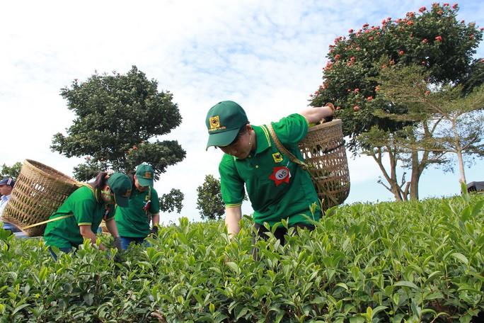 Festival hoa Đà Lạt 2017 du khách sẽ có dịp Phiêu du xứ Bảo - Ảnh 6.
