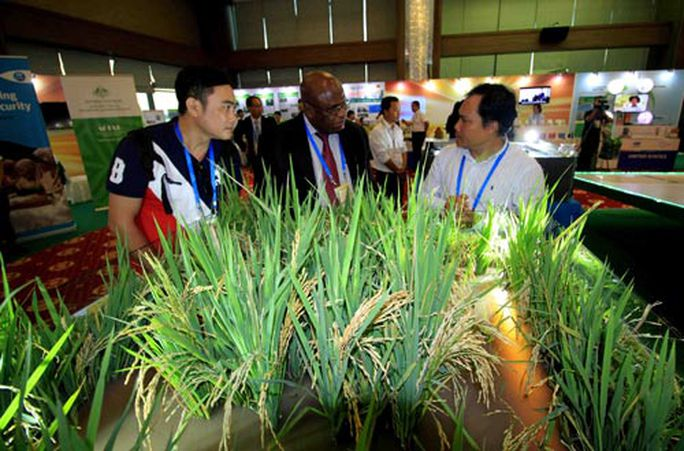 Đầu tư y tế là chìa khóa phát triển bền vững - Ảnh 1.