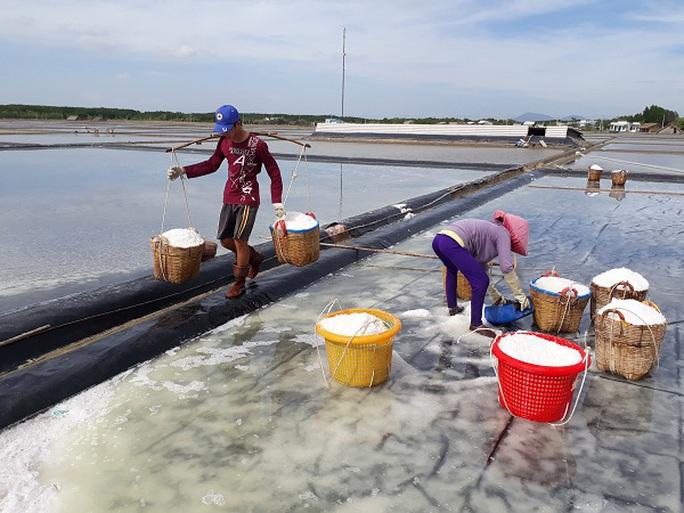 Diêm dân thu hoạch muối