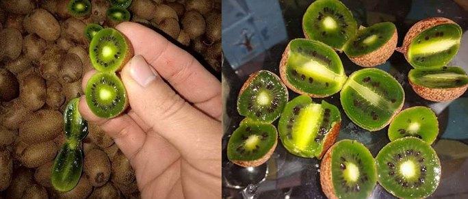 Chị em tranh mua kiwi tí hon 1 triệu/kg - Ảnh 4.