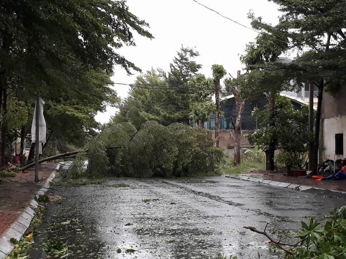 Bão số 2 vào đất liền: Cây đổ, mất điện, nhà tốc mái - Ảnh 14.