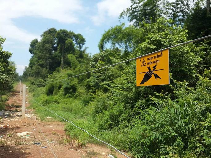 Cảnh báo nguy hiểm ở hàng rào điện ngăn voi - Ảnh 1.