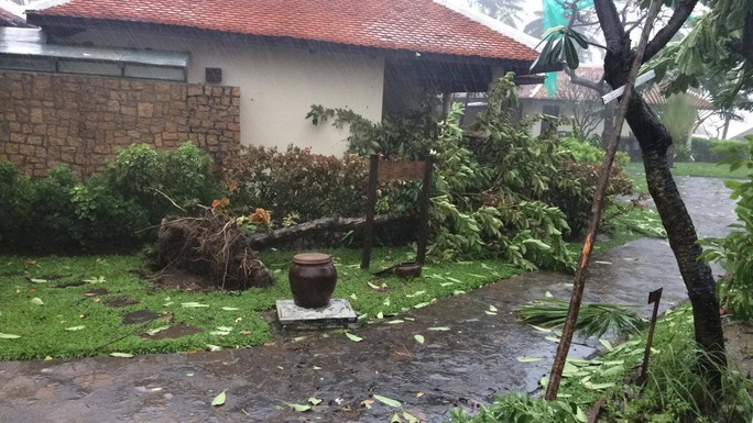 Gần 50 năm sống ở Nha Trang mới thấm thía bão - Ảnh 11.