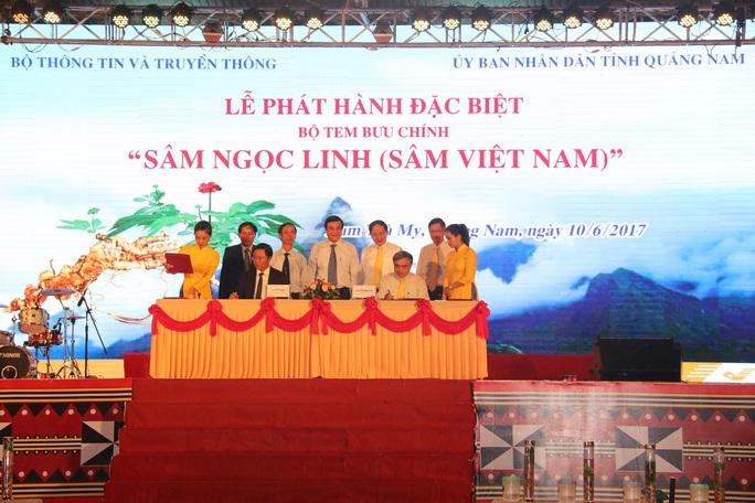 Bán được củ sâm giá 120 triệu đồng tại lễ hội sâm Ngọc Linh - Ảnh 1.