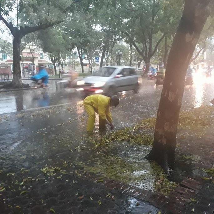 Sau đợt nắng nóng kỷ lục, Hà Nội mưa gió giông lốc đổ cây - Ảnh 6.