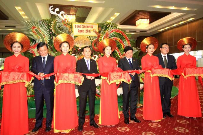 Ngắm những mô hình nông nghiệp độc đáo của Việt Nam tại APEC - Ảnh 1.