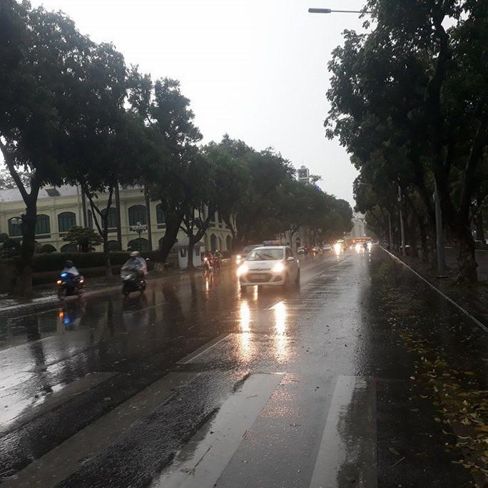 Sau đợt nắng nóng kỷ lục, Hà Nội mưa gió giông lốc đổ cây - Ảnh 2.