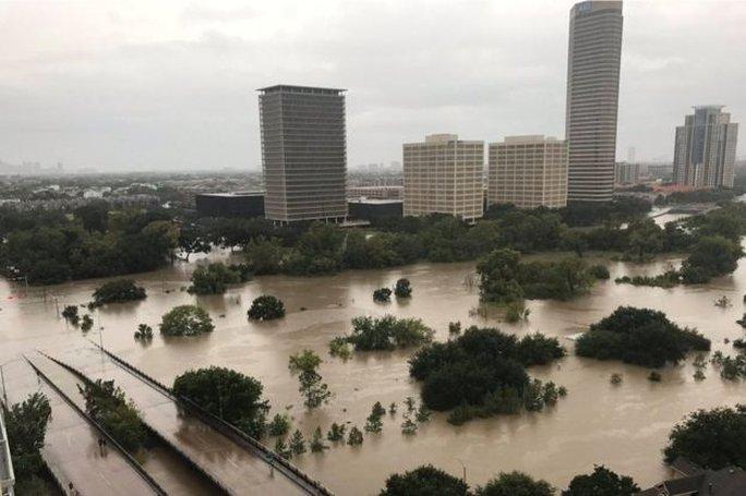 Mỹ: Bức ảnh gây sốc trong bão Harvey - Ảnh 7.