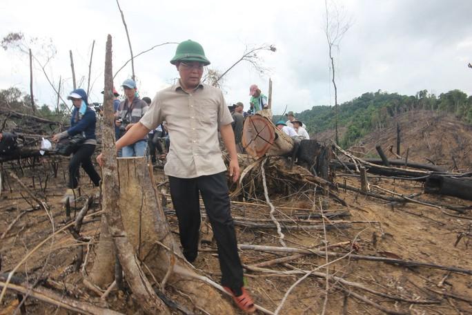 Xử lý vụ phá rừng ở Quảng Nam: Không có vùng cấm! - Ảnh 1.