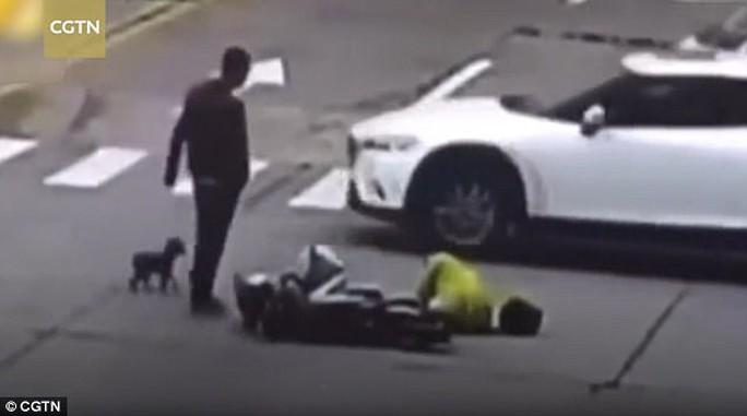 Chủ bị đụng xe, chó cưng đuổi theo chặn đường xe gây tai nạn - Ảnh 2.
