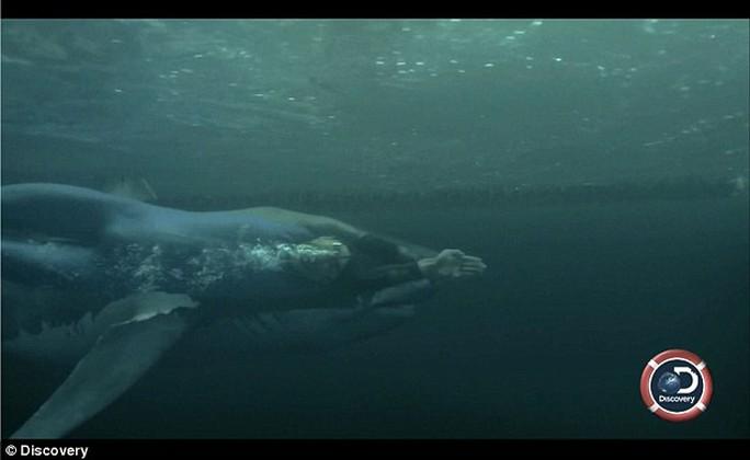Kình ngư Phelps bị ném đá vì so tài với cá mập giả - Ảnh 1.
