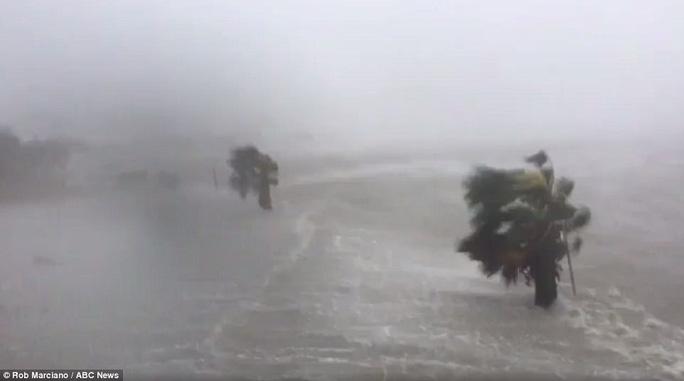 Cận cảnh đổ nát tại bang Texas sau siêu bão Harvey  - Ảnh 5.