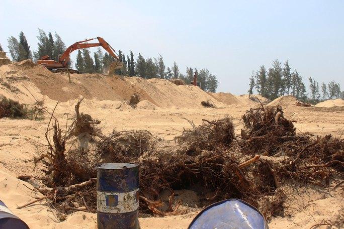 Rừng phi lao chắn gió bảo vệ TP Tuy Hòa bị chặt trụi làm sân golf. Ảnh dưới: Gần 116 ha rừng phòng hộ xanh tốt ven biển nay chỉ còn vài hàng phi lao lưa thưa