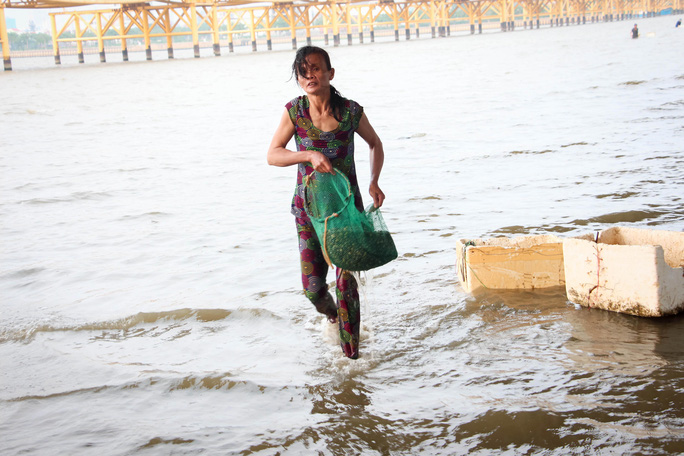 Một người bắt hến tất tả trên sông Hàn