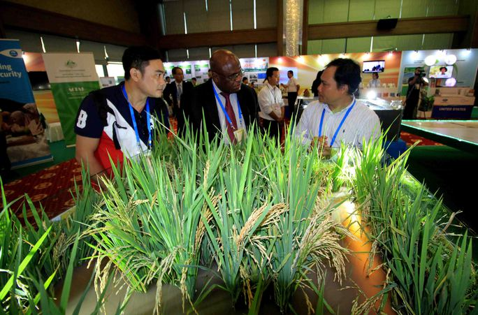 Ngắm những mô hình nông nghiệp độc đáo của Việt Nam tại APEC - Ảnh 5.