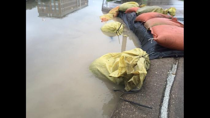 Tấm ảnh ám ảnh của nạn nhân thiệt mạng trong bão Harvey - Ảnh 4.
