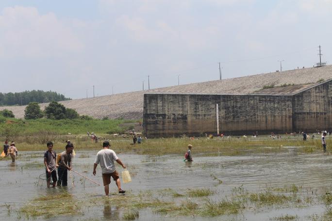Đổ xô đi bắt cá ở hồ thủy điện Trị An - Ảnh 7.