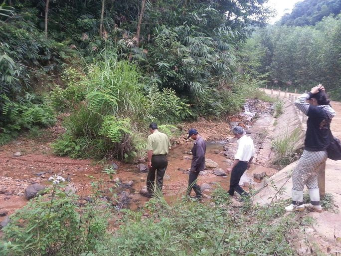 Dồn sức giữ rừng (*): Biệt đội rừng xanh - Ảnh 1.
