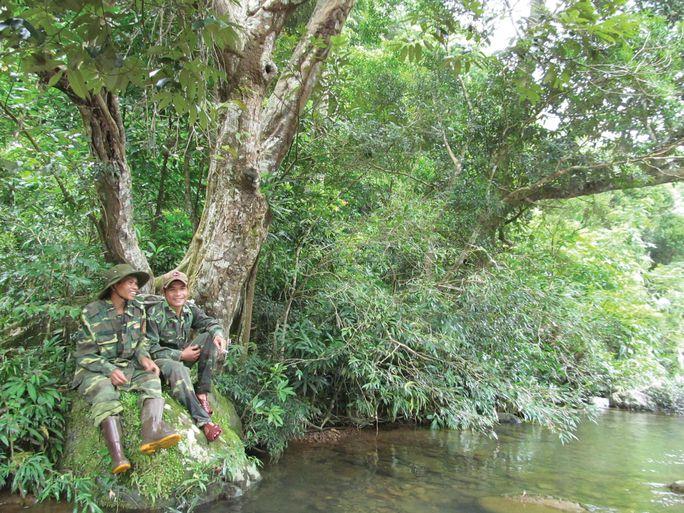 Dồn sức giữ rừng (*): Biệt đội rừng xanh - Ảnh 2.
