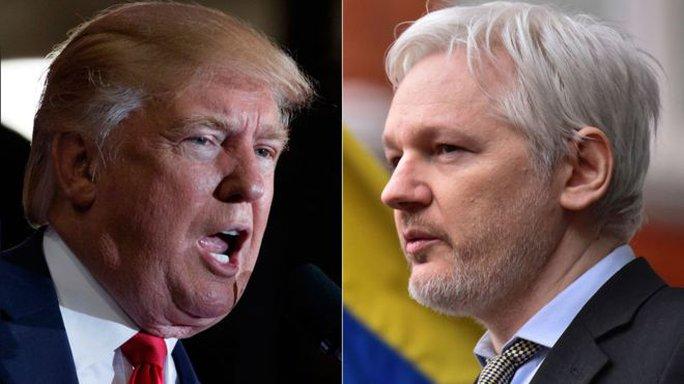 Ông Donald Trump và ông Julian Assange, nhà sáng lập Wikileaks. Ảnh: AP