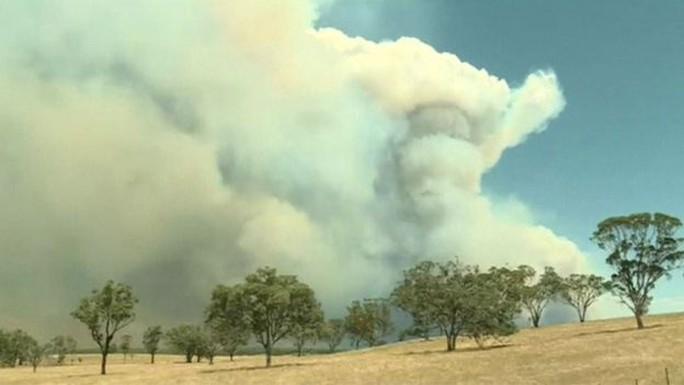 Hình ảnh khói dày đặc trong vụ cháy rừng ở bang New South Wales - Úc. Ảnh: Reuters