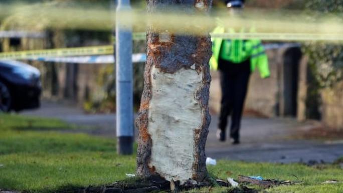 Xe hơi lao vào cây, 5 người thiệt mạng - Ảnh 3.