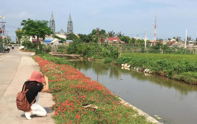 Ngỡ ngàng những con đường hoa rực rỡ làng quê miền Bắc - Ảnh 4.