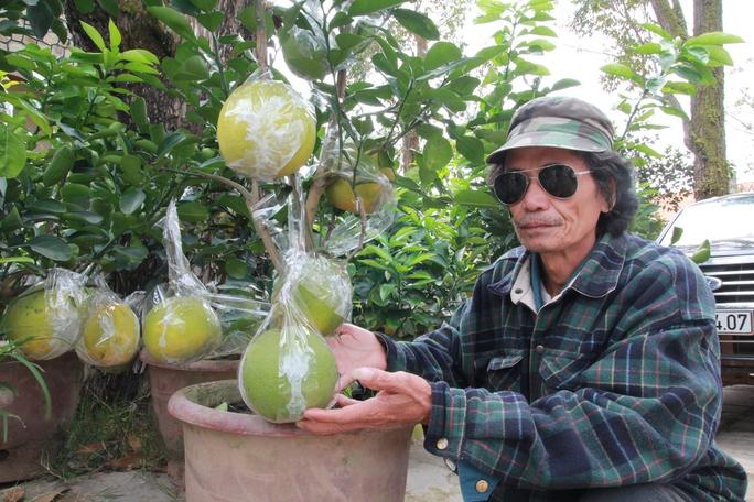 Ông Tâm bên những chậu kiểng bonsai độc, lạ tại chợ kiểng Tết ở đường Quang Trung, TP Đà Lạt.