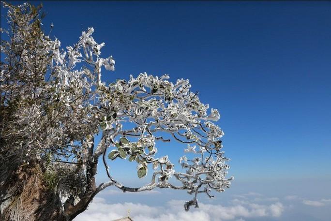 Nhiệt độ xuống -7 độ C, băng tuyết phủ trắng đỉnh Fansipan - Ảnh 16.