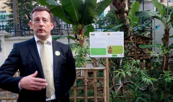 Khu vườn bí mật trong Đại sứ quán Pháp ở Hà Nội - Ảnh 5.