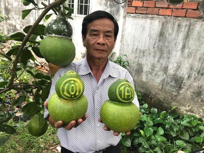 Trái cây độc, lạ sẵn sàng đón Tết - Ảnh 3.