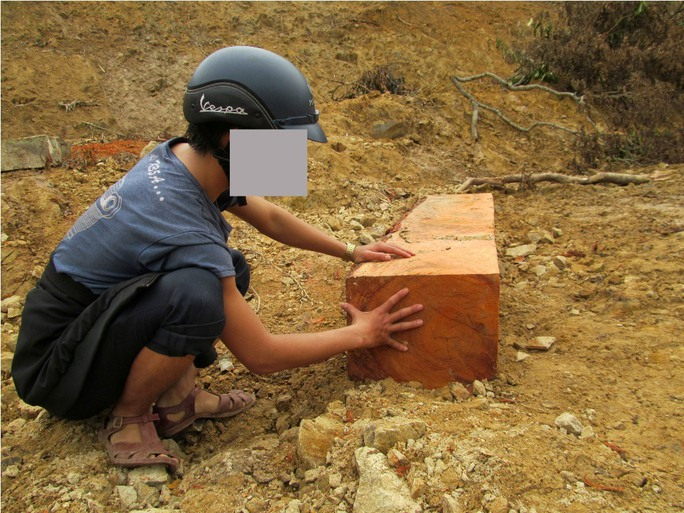 Một hộp gỗ vuông vức được tập kết bên đường
